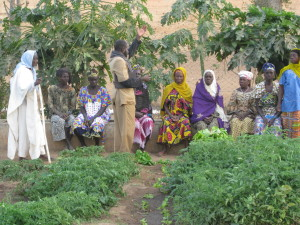Stop Sahel in Mali supported the Djefala Saving for Change group to develop a business plan and get a loan for expansion